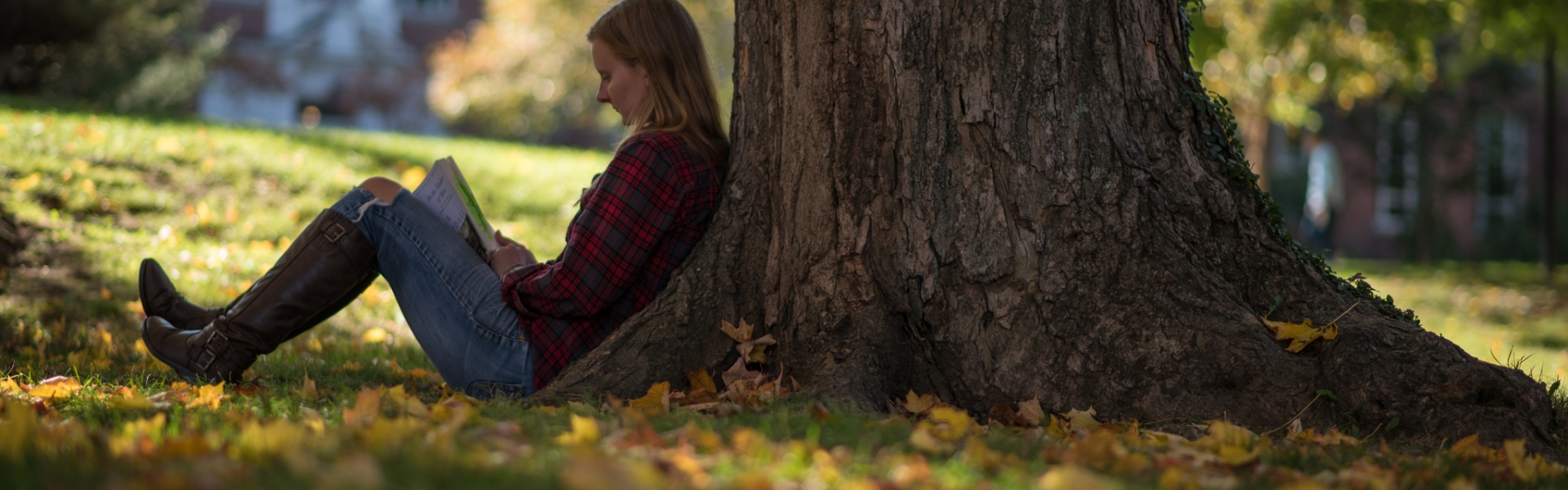 Student sitting next to tree in the fall